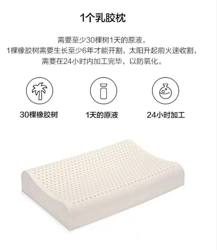颈椎乳胶枕